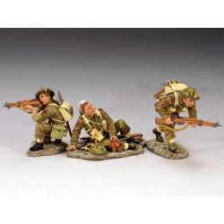 DD110 British 3rd. Infantry...